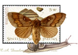 Artist Stamp: Life PAth (Moth to Flame in South Pacigs in Snail race)